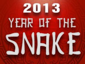 2013 Chinese-snake