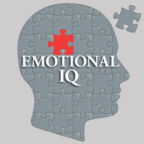 emotional intelligence success thesis work